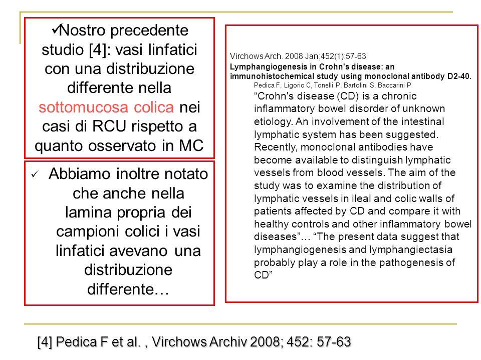 Nostro precedente studio [4]: vasi linfatici con una distribuzione differente nella sottomucosa colica nei casi di RCU rispetto a quanto osservato in MC